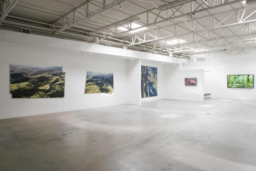 Mark Tribe: New Landscapes, March 14-April 25, 2015, Zhulong Gallery, Dallas